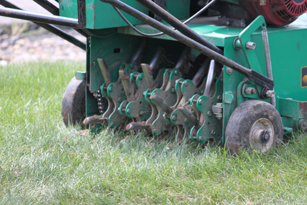 Lawn Over-Seeding & Aeration Kingsport, Johnson City, Bristol and Greeneville.