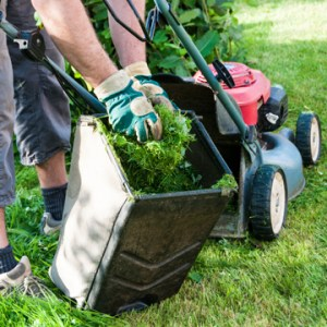 The real cost of doing your own lawn care kingsport tn cost of do it yourself lawncare solutioingenieria Gallery
