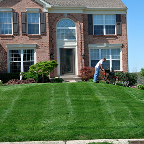 Mowing The Lawn Do It Yourself Or Hire A Service
