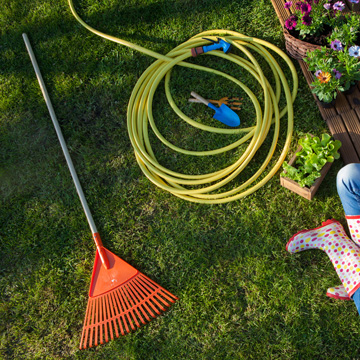 spring lawn care guide