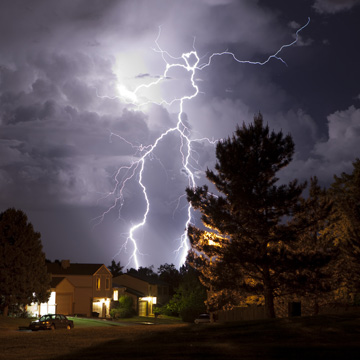 dealing with tree struck by lightening