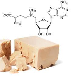Same (S-Adenosil-L-Metionina)
