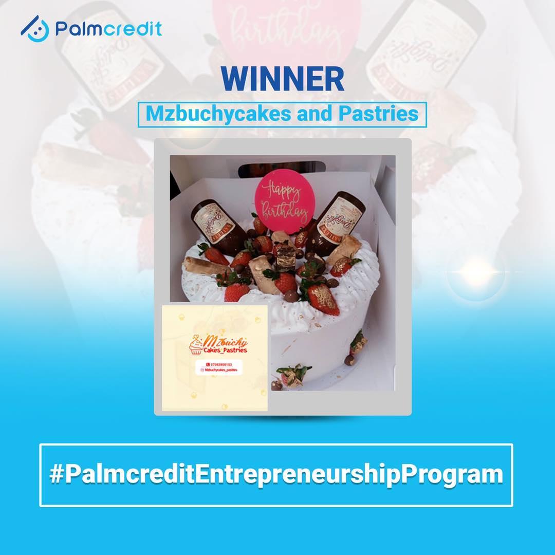 Winner of Palmcredit Entrepreneurship Program Has been Announced.