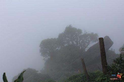 places to visit around chikmagalur - View near Manikyadhara Falls