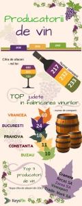 vin-2
