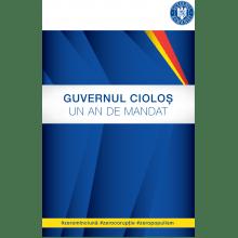 raport-guvern
