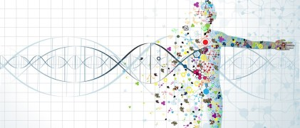Cáncer y genética