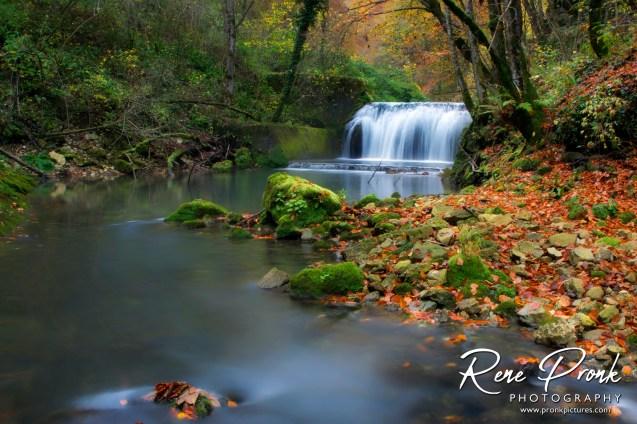 Taken in Slapnica nature reserve, Croatia, October 26, 2016.