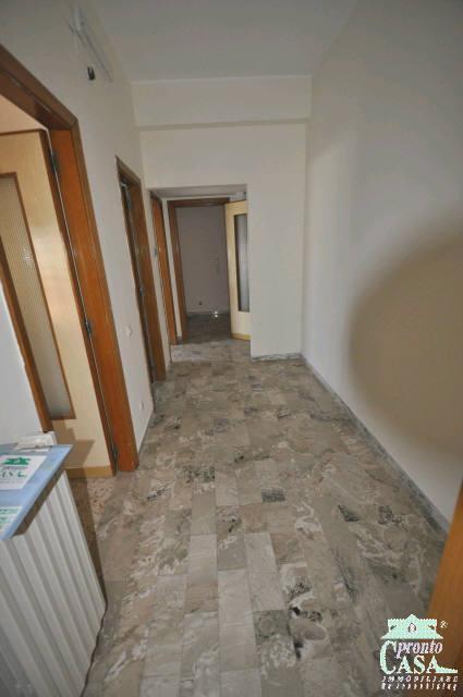 Pronto Casa: Appartamento a Ragusa in Affitto a Ragusa Foto 9