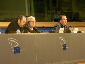 parlamentoeuropeodanielestulin02-300x225