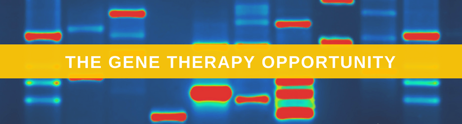 The Gene Therapy Opportunities