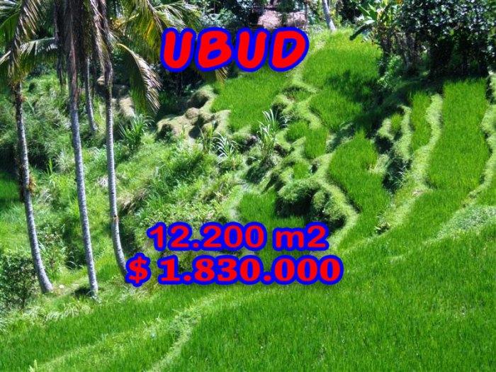 Land for sale in Ubud 12.200 m2 in Ubud Tampak siring Bali