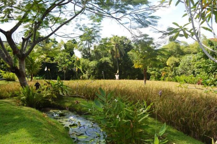 Land for sale in Canggu Bali 3,475 m2 in Canggu