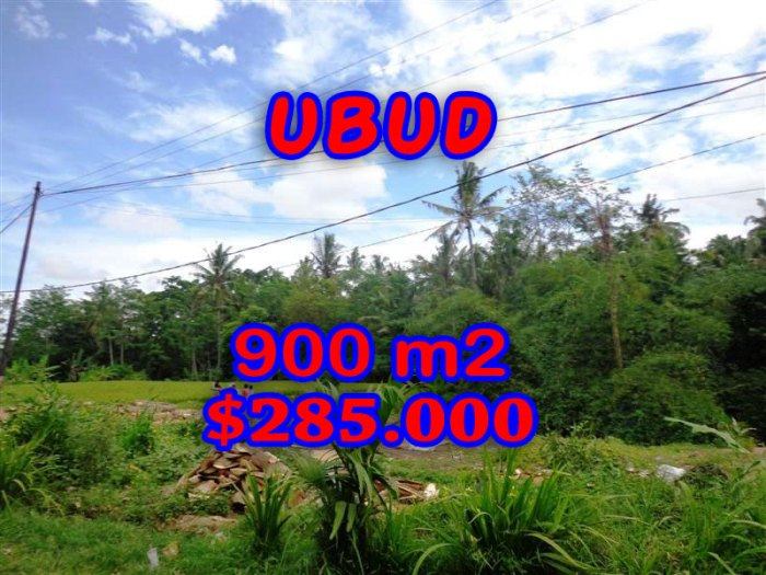 Amazing property in Bali for sale, rice fields view  land in Ubud Tegalalang  – TJUB259