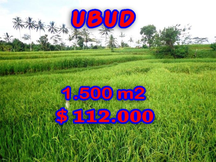 Magnificent Property for sale in Bali, land sale in Ubud Tegalalang – TJUB242