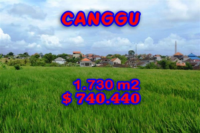 Astounding Property in Bali for sale, Rice fields view  land in Canggu Bali – TJCG095