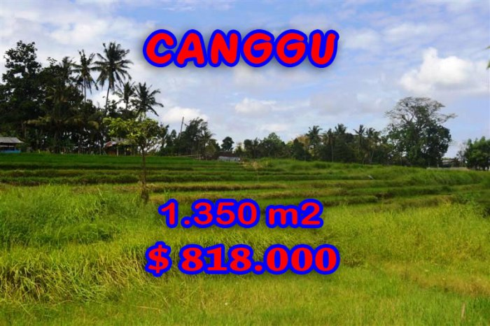 Property in Bali for sale, Astonishing land for sale in Canggu Bali – TJCG114