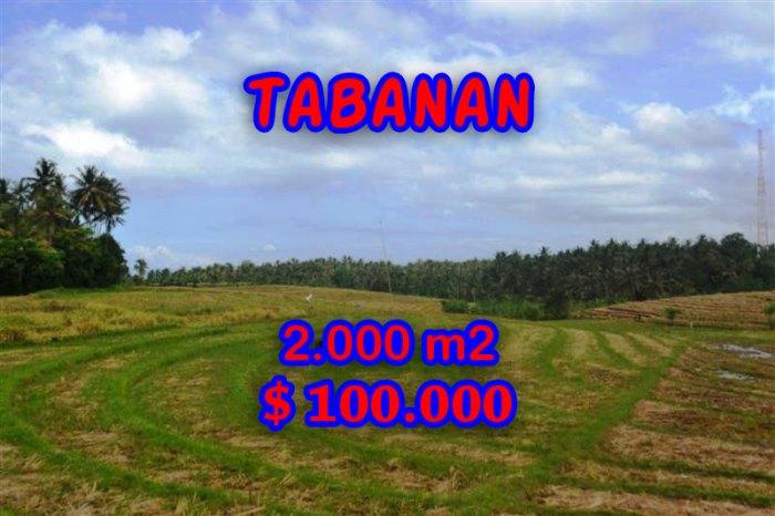 Astounding Property in Bali for sale, Mountain view land in Tabanan Bali – TJTB055