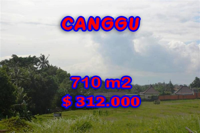 Exceptional Property for sale in Bali Indonesia, land for sale in Canggu Bali – TJCG110