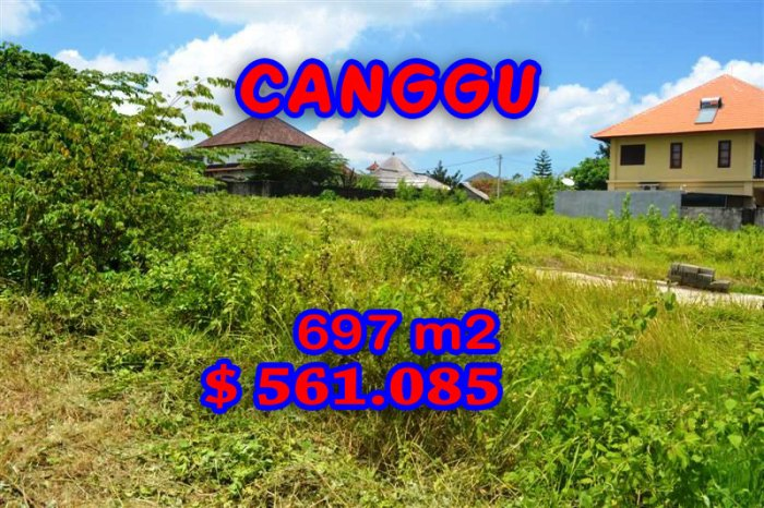 Stunning Property for sale in Bali, Canggu land for sale – TJCG097