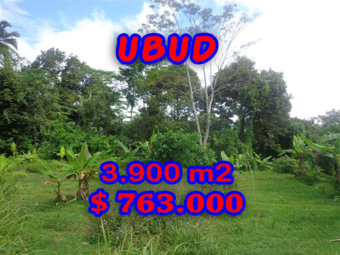 Property in Bali for sale, Exceptional view in Ubud Tampak Siring – TJUB276