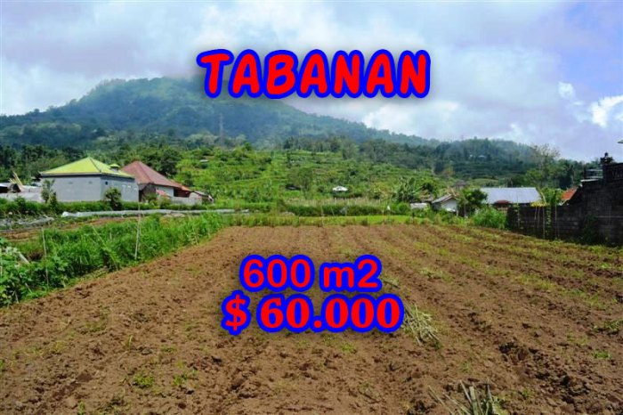 Magnificent Property for sale in Bali, land for sale in Tabanan Bali – TJTB058