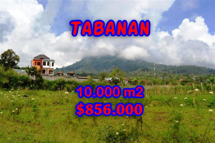 Spectacular Property for sale in Bali, land for sale in Tabanan Bali – TJTB060