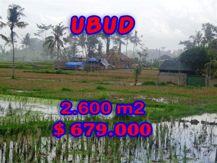 Property in Bali for sale, rice fields view land for sale in Ubud Center – TJUB281