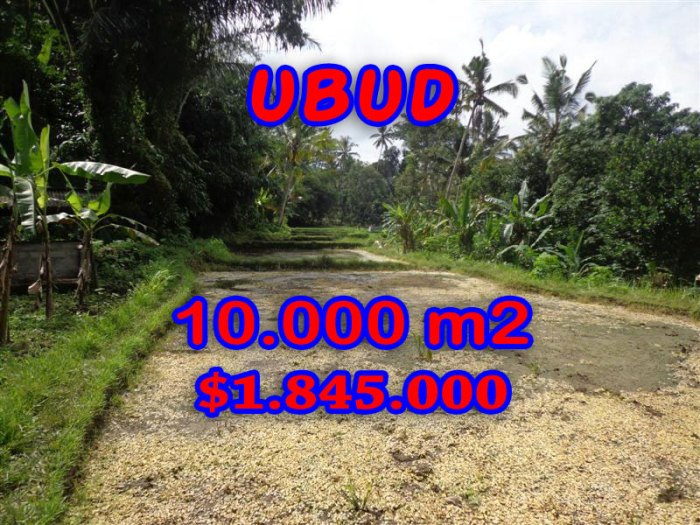 Amazing Property for sale in Bali, land for sale in Ubud Bali – TJUB258