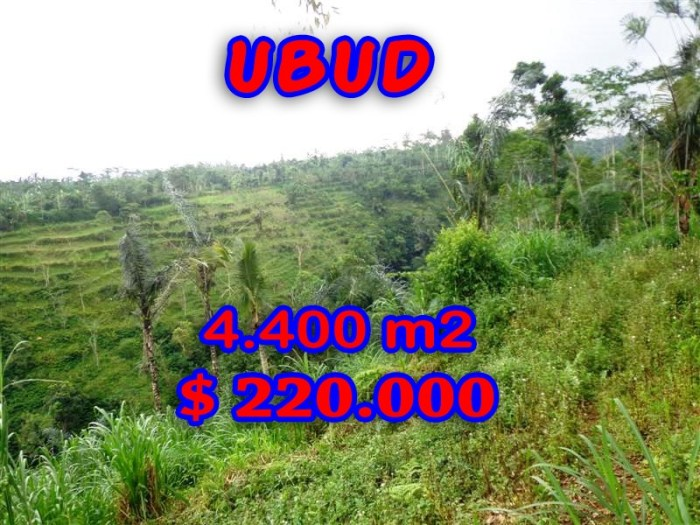 Outstanding Property for sale in Bali, land for sale in Ubud Bali – TJUB251