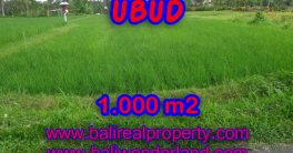 Magnificent Property for sale in Bali, land for sale in Ubud Bali – TJUB345