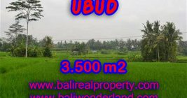 Excellent Property for sale in Bali, land for sale in Ubud Bali – TJUB361