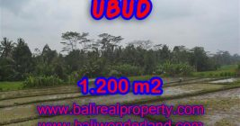 Exotic Property for sale in Bali, LAND FOR SALE IN UBUD Bali – TJUB360