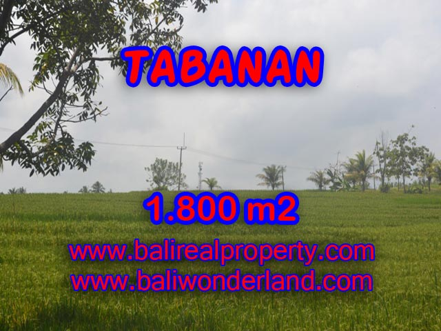 Fantastic Property for sale in Bali, LAND FOR SALE IN TABANAN Bali – TJTB083