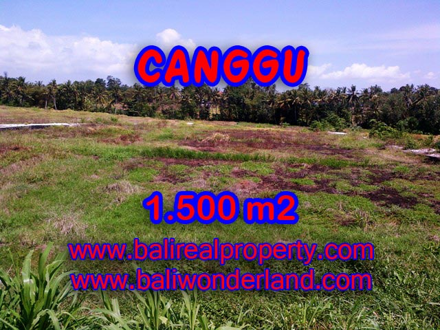 Property in Bali for sale, Exotic view in Northern Canggu – TJCG127