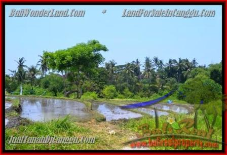Affordable Land for sale in Canggu Batu Bolong Bali TJCG136