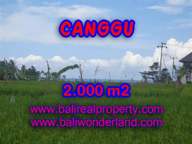Property sale in Bali, Beautiful land in Canggu for sale – TJCG140