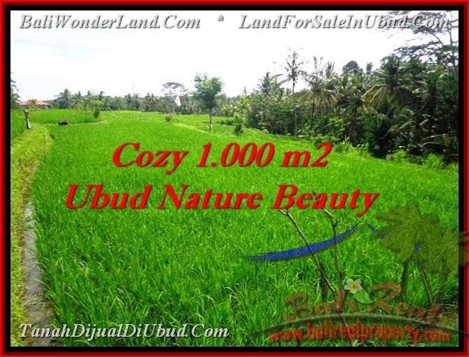 Affordable LAND FOR SALE IN Ubud Tegalalang BALI TJUB478