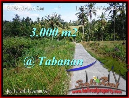 3,000 m2 LAND SALE IN TABANAN TJTB205