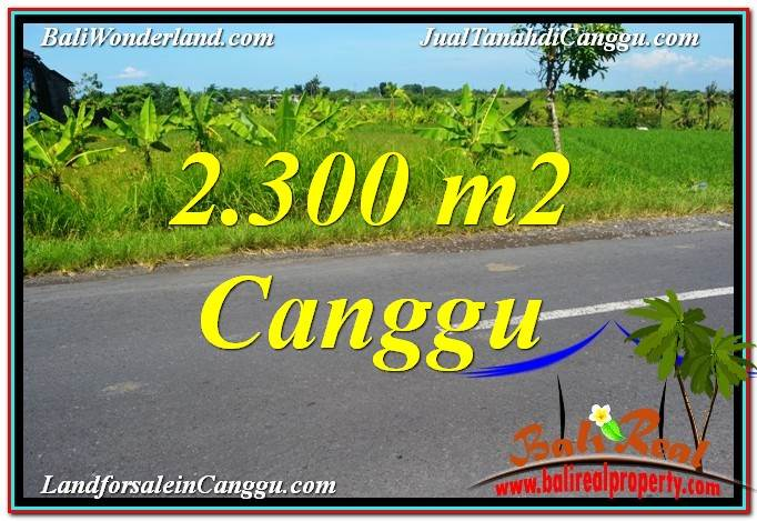 Beautiful Canggu echo beach BALI 2,300 m2 LAND FOR SALE TJCG209