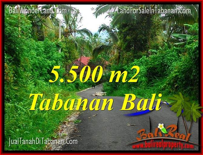 FOR SALE Magnificent 5,500 m2 LAND IN TABANAN TJTB323