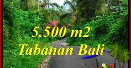 Exotic TABANAN LAND FOR SALE TJTB323