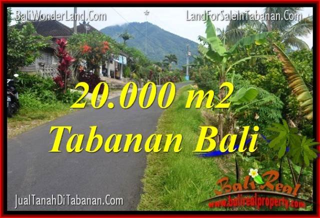 FOR SALE Beautiful PROPERTY 20,000 m2 LAND IN TABANAN BALI TJTB315