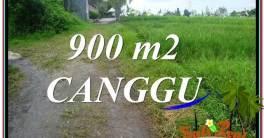 Exotic PROPERTY LAND IN Canggu Batu Bolong BALI FOR SALE TJCG215