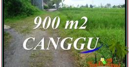 Exotic PROPERTY LAND IN Canggu Batu Bolong BALI FOR SALE TJCG215