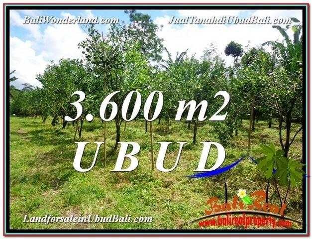 Exotic 3,600 m2 LAND SALE IN UBUD BALI TJUB599