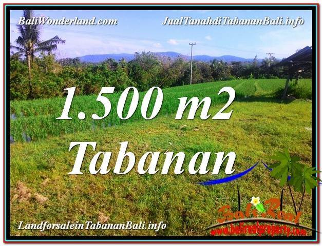 Affordable PROPERTY 1,500 m2 LAND SALE IN Tabanan Selemadeg BALI TJTB353