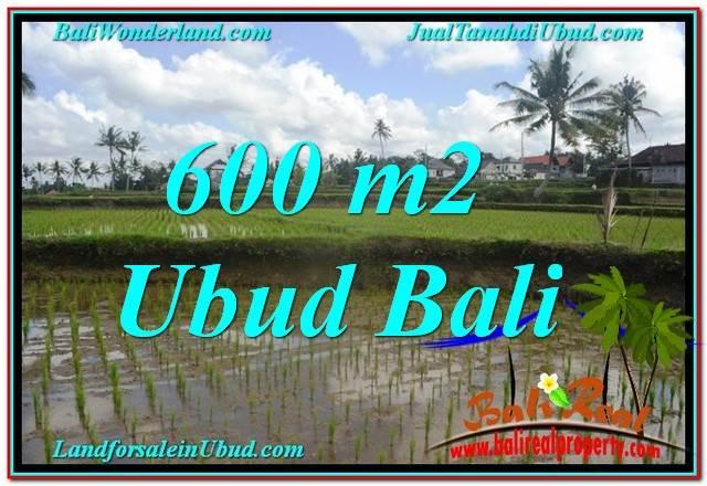 FOR SALE Beautiful 600 m2 LAND IN UBUD BALI TJUB621