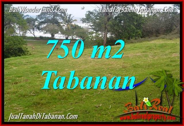 Magnificent 750 m2 LAND FOR SALE IN TABANAN TJTB346