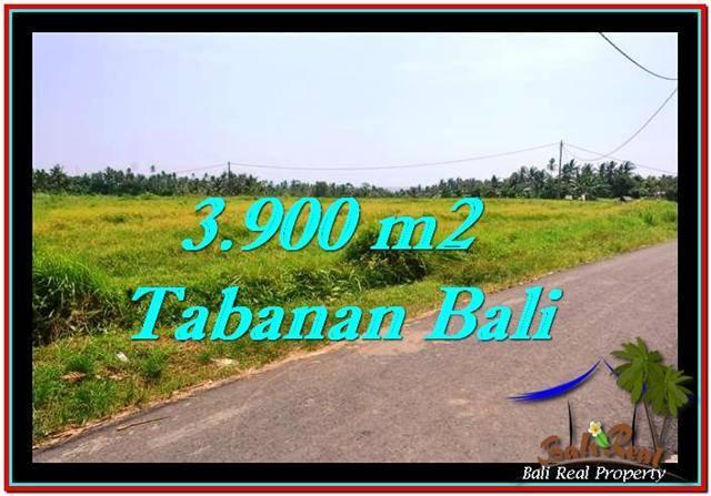 3,900 m2 LAND IN TABANAN BALI FOR SALE TJTB258